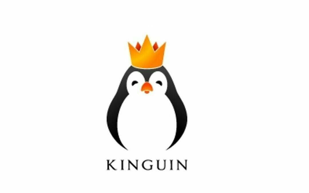 Kinguin : avis et test d'achat de clés CD