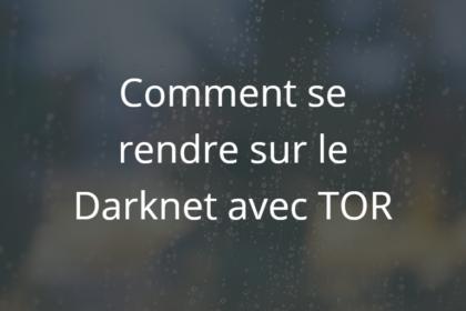 darknet-image-une