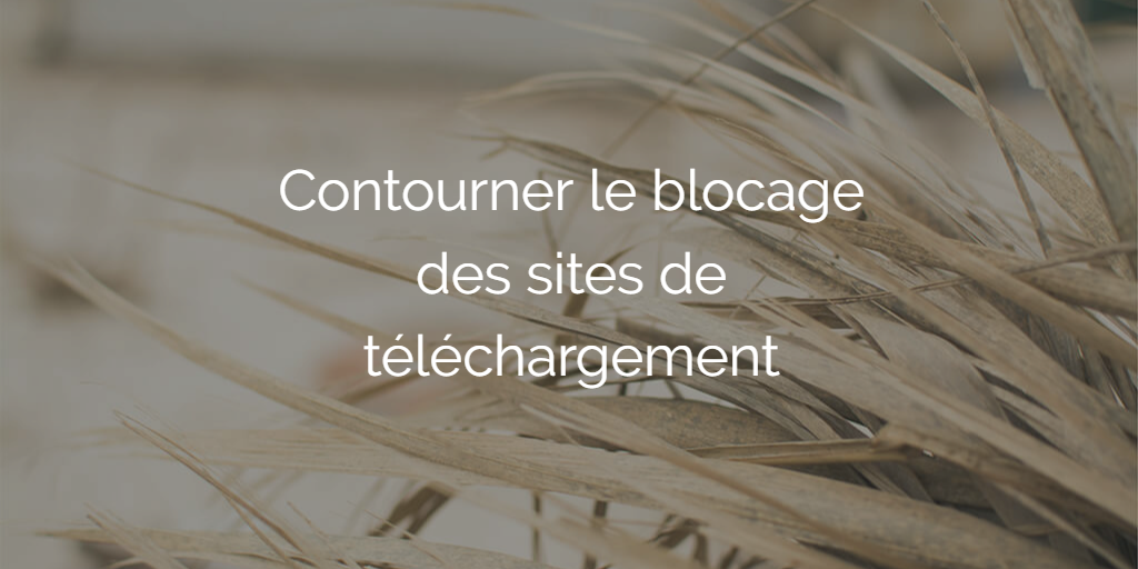 contourner-blocage-site-telechargement-torrent9-cpasbien-yggtorrent