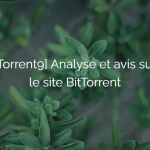 torrent9 analyse avis site telechargement