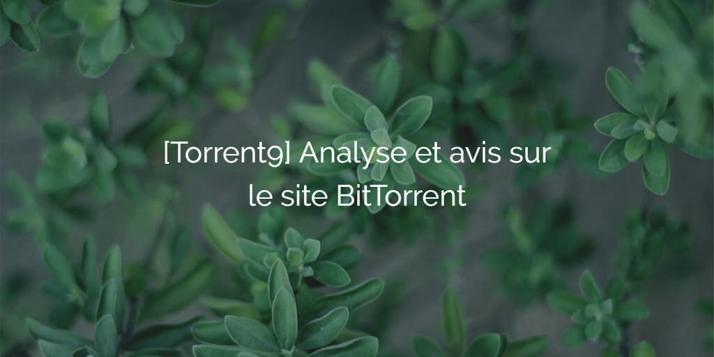 torrent9-analyse-avis-site-telechargement