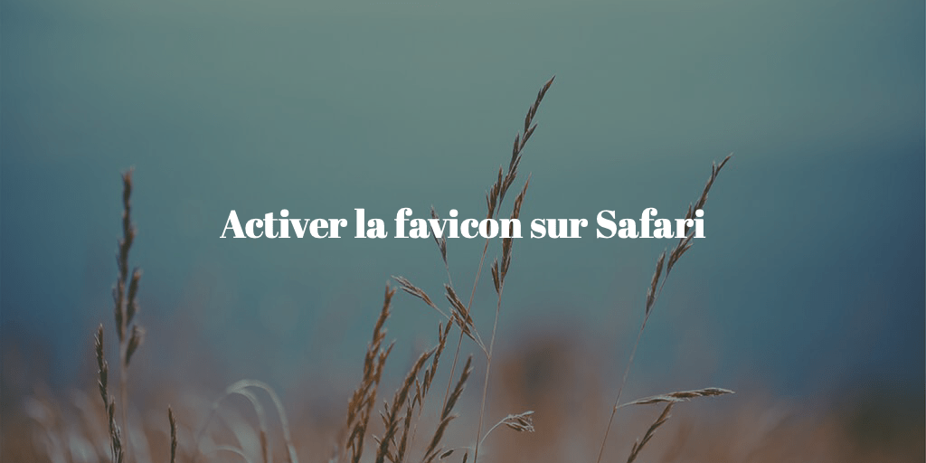 tuto-activer-favicon-safari-macos